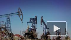 WSJ: Техас намерен ограничить добычу нефти из-за обвала цен