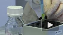 """Месяц """"новой медицины"""". Рассказываем об открытиях петербургских ученых"""