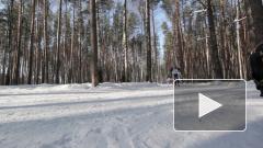 На этапе лыжного Кубка мира в Норвегии Большунов стал пятым в спринте