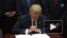 Рейтинг Трампа достиг рекордного минимума после доклада Мюллера