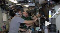 Евопейский транспортный корабль Эдоардо Амальди пристыковался в МКС