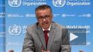 ВОЗ оценила ситуацию с коронавирусом в России и на Украине
