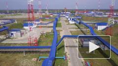 Чистая российская нефть поступила на Мозырский НПЗ в Белоруссии