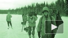 Генпрокуратура объявила причину гибели туристов на перевале Дятлова
