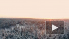 Синоптики предупредили о предстоящем снегопаде и метели в Москве