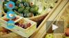 За первый месяц 2016 года продукты подорожали на 2%