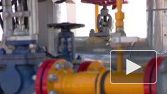 """""""Нафтогаз"""" потребовал """"Газпром"""" разблокировать доступ к газу из Туркмении"""