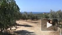 Трудолюбие и солнце: как живется на острове Крит