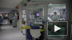 В Германии обнаружили новую мутацию коронавируса