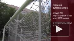 Лавров и Шойгу объявили о старте Народной футбольной лиги
