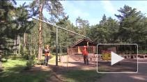 Модернизация электроосвещения в Петербурге