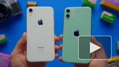 Apple оспорит заявление ФАС о злоупотреблении на рынке приложений