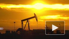 Правительство России не регулирует цены на нефть для Беларуси