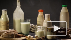 В Россельхознадзоре опровергли информацию о повышении цен на молоко