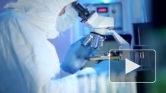 В России создали препарат для лечения коронавируса