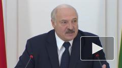 Александр Лукашенко призвал Россию и Украину сесть за стол переговоров из-за ситуации на Донбассе
