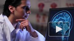 В США создан высокоскоростной микроскоп для анализа мозга