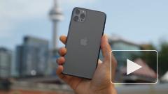 Стало известно, когда выгоднее всего приобретать новый iPhone в России