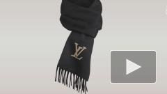 Губернатор Петербурга продемонстрировал приверженность к Louis Vuitton