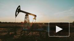 В Белоруссии не хотят оставлять прежние премии российским нефтяным компаниям
