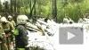 Су-27 в Карелии рухнул в 300 метрах от места падения ...