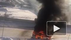 В Петербурге дотла выгорел пассажирский автобус
