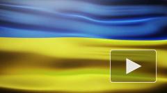 В Крыму неизвестные подняли флаг Украины в память о погибших бойцах ВСУ