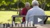 В Конституции зафиксируют индексацию пенсий работающим ...