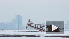 Намыв в Финском заливе около Сестрорецка дошел до губернатора Петербурга