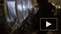 Петербургские руферы поддержали идею Цивилева по уборке снега с крыш