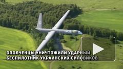 В ДНР заявили об уничтожении ударного беспилотника ВСУ