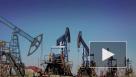 В Северной Америке приостановил работу крупный нефтеперерабатывающий завод