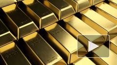 В московском аэропорту выронили золотые слитки на 57 миллионов рублей
