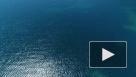 В Совфеде хотят изменить разграничение территории с США в Беринговом проливе