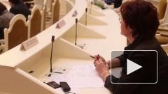 В Законодательном Собрании Петербурга депутаты поделили комиссии