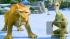 """Мультфильм """"Ледниковый период-4: Континентальный дрейф"""" собрал в России рекордную сумму"""