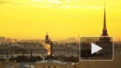 Петербург превратят в Гарлем вместо города-музея