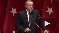 Эрдоган предложил проверить мозг Макрону на наличие рака мозга
