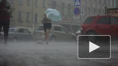В ближайшие часы на Петербург обрушится ливень с грозой