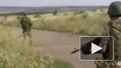 ДНР опровергла свою причастность к гибели украинских военных