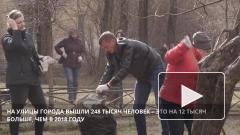 Четверть миллиона петербуржцев вышли на улицу с граблями и метлами