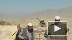 У спецслужб США не нашлось доказательств сговора России с талибами