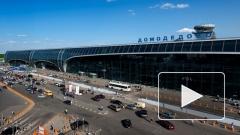 """Группа компаний """"Ренова"""" Виктора Вексельберга ведет переговоры о покупке аэропорта """"Домодедово"""""""