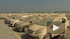 Honda уничтожила сотни своих собранных автомобилей