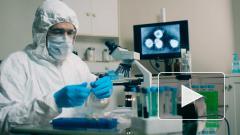 Британские ученые раскрыли происхождение коронавируса