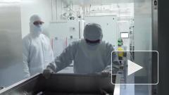 Вакцинацию от коронавируса в России могут начать осенью