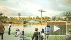 Губернатор Петербурга отменил перенос нового зоопарка в Удельный парк