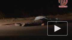 В Улан-Удэ сбили пешехода