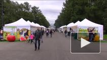 В Петербурге прошел фестиваль национальных кухонь