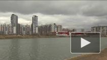 Экология в большом городе